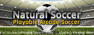 Natural Soccer System Requirements
