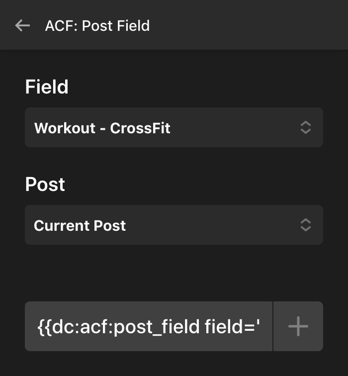 ACF Pro Dynamic Content and Looper Example