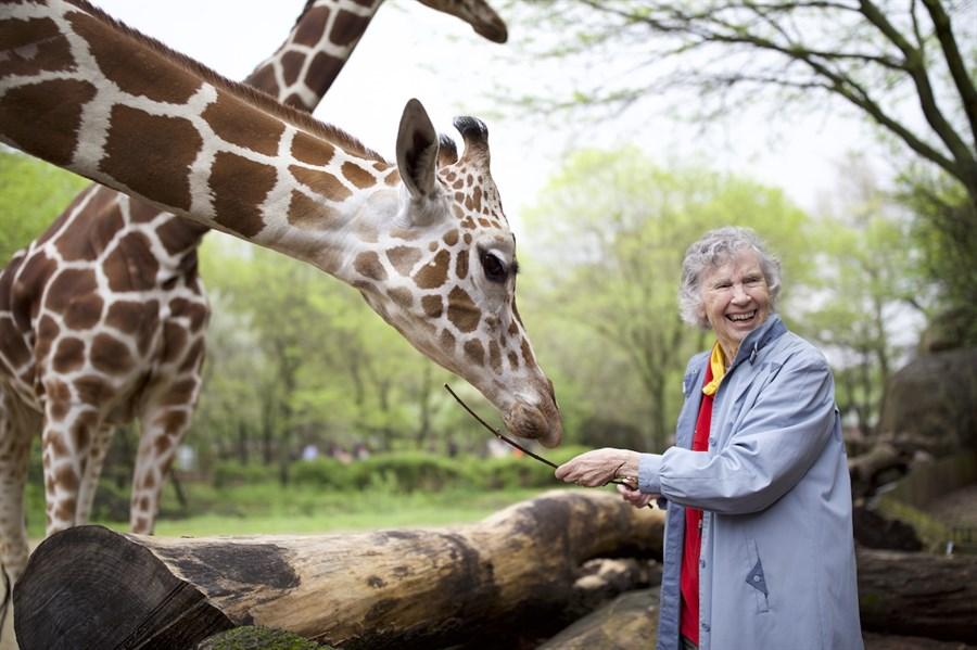 Woman Who Loves Giraffes