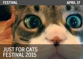 Just for Cats 2015 Festival