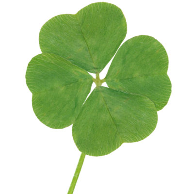 luck, four-leaf clover, clover, Saint Patrick's Day, Grammarly, idioms