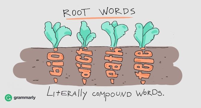 root words killer grammar