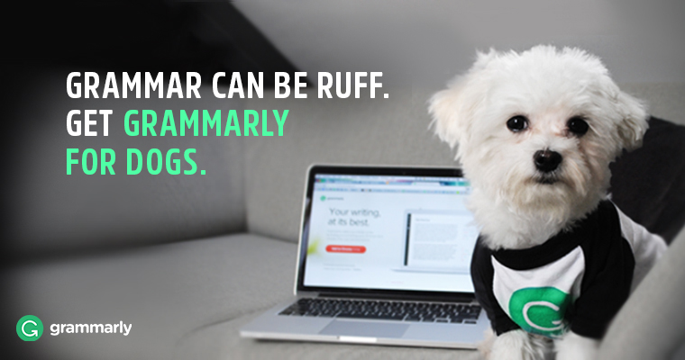 We've Gone to the Dogs! Introducing Grammarly for Your Pup