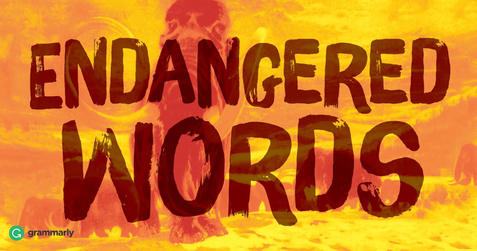 6 Endangered Words image