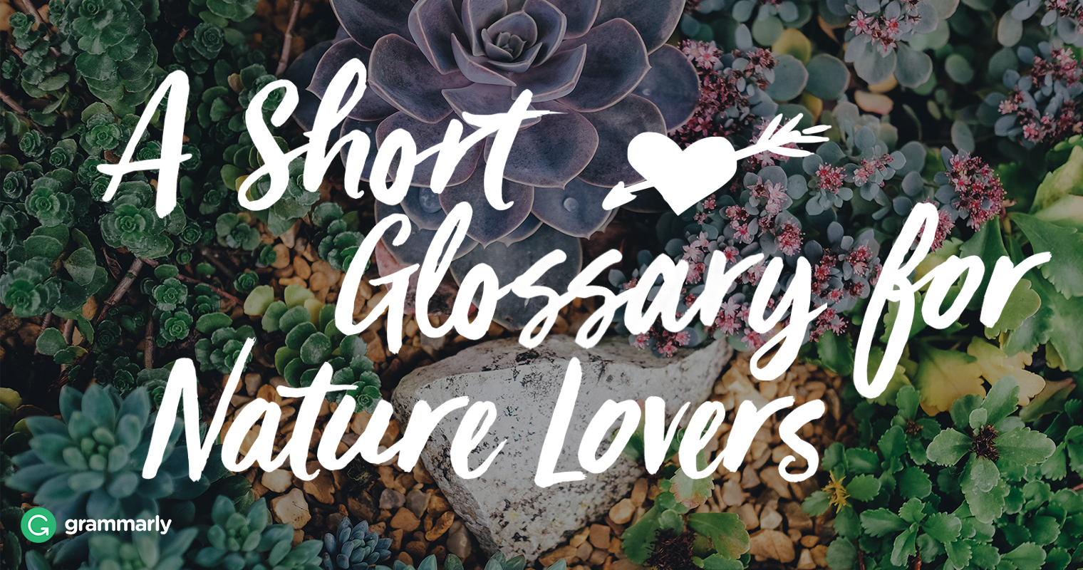 7 Words for Nature Lovers