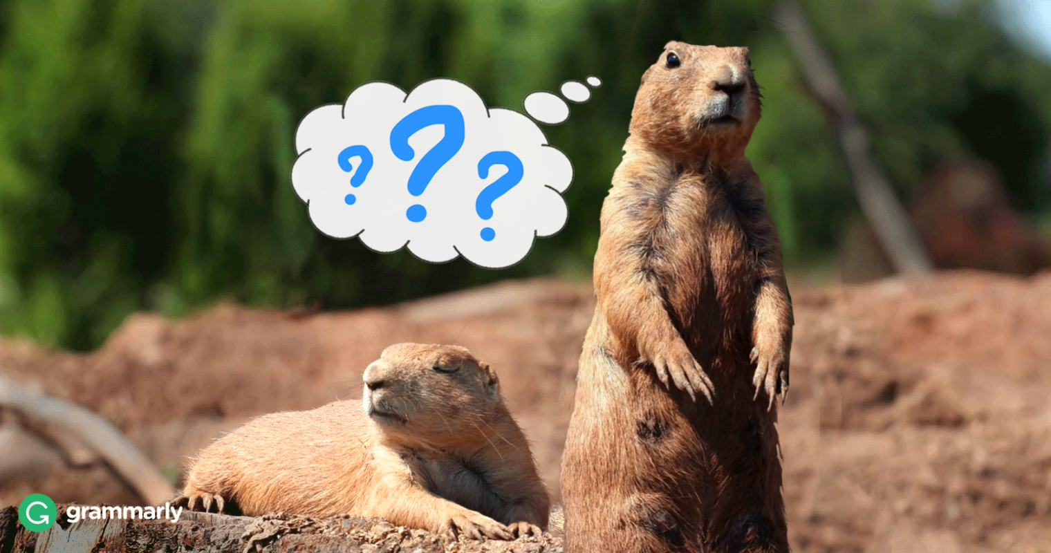 Why Is Groundhog Day a Holiday? An Investigation image