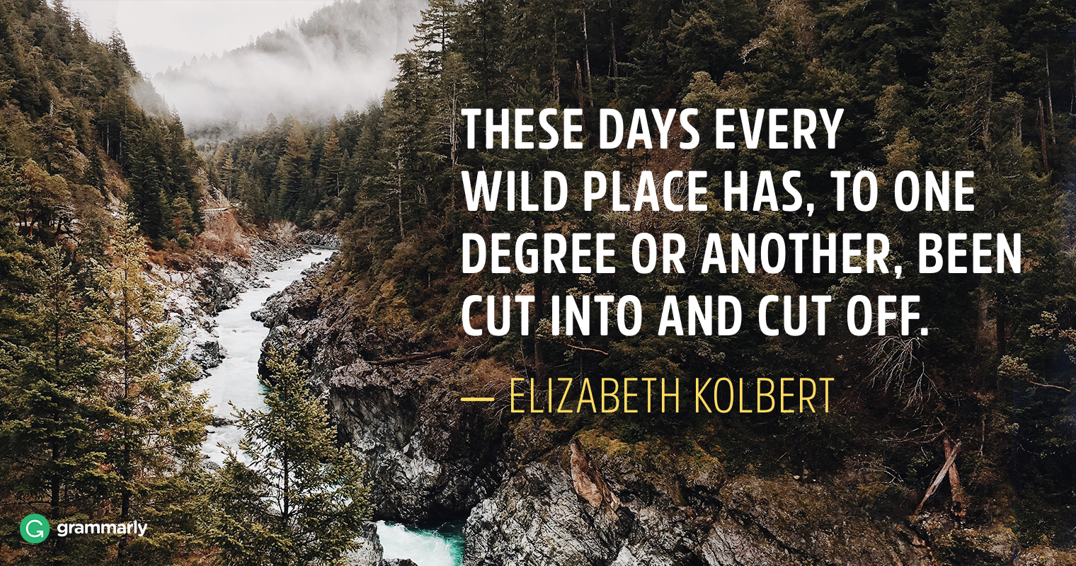 8 Things We Can All Learn From Elizabeth Kolbert image