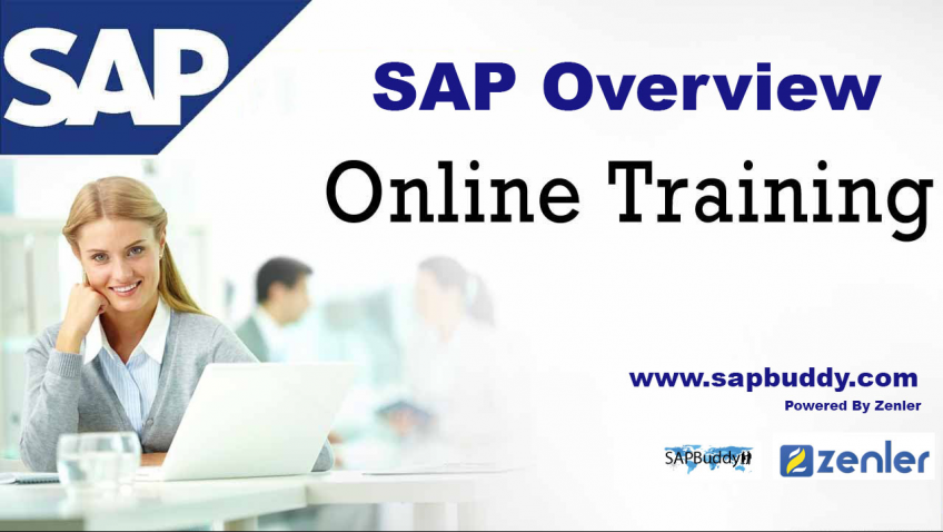 SAP Overview - Get SPAbuddy Course Totally Free