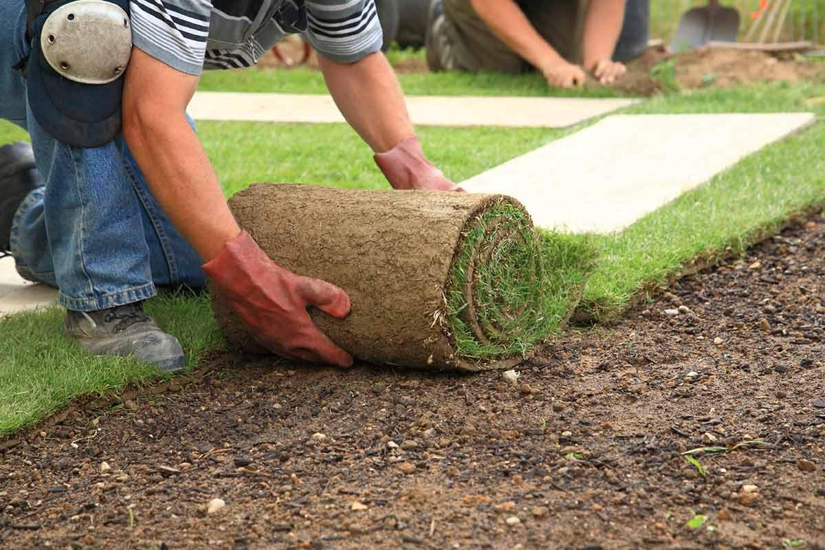 When to consider hiring on a landscaper