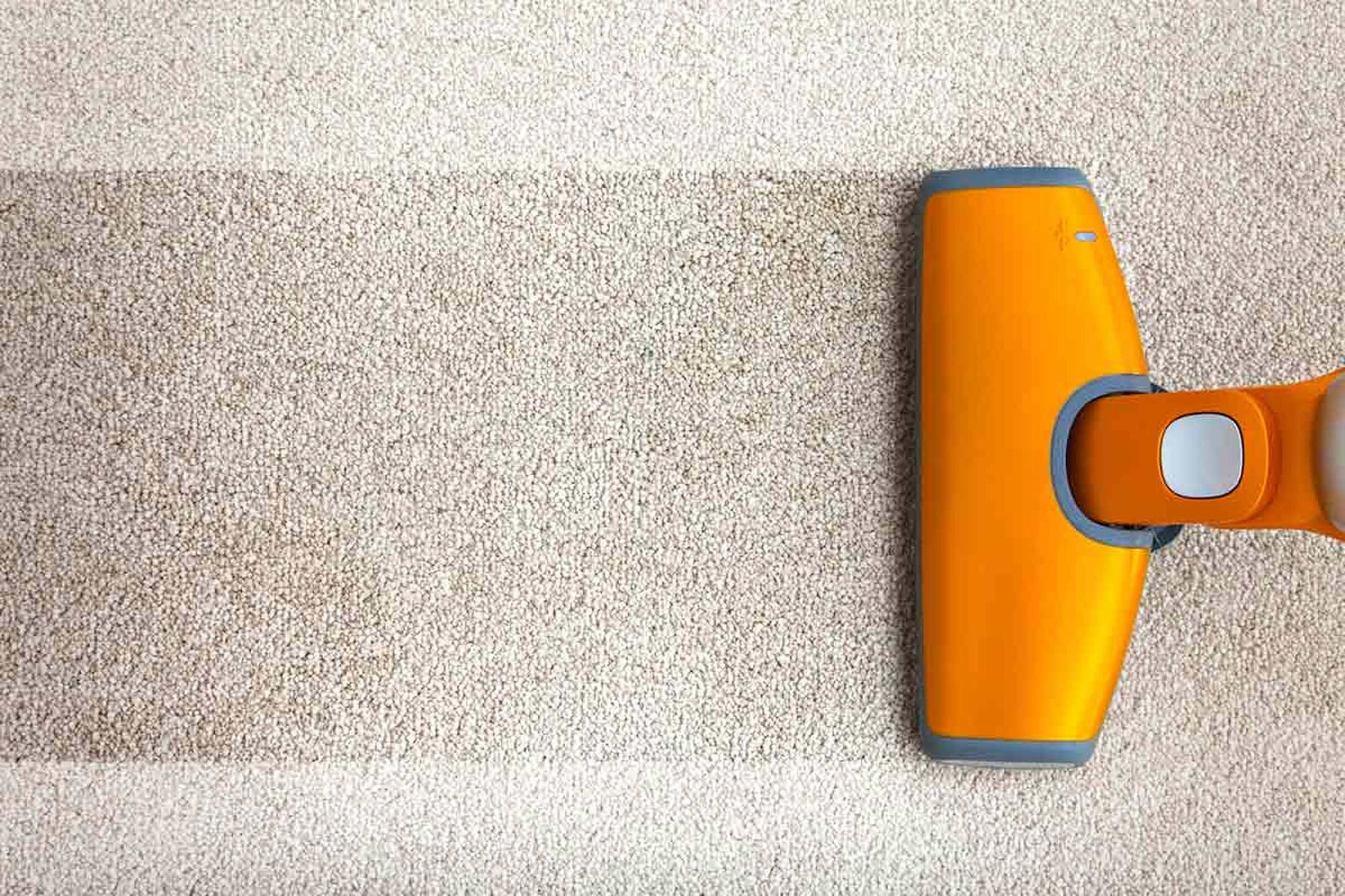 Carpet Cleaning: Hire a Professional or DIY?
