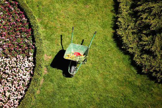 Landscape Design: 5 Fabulous Landscaping Trends