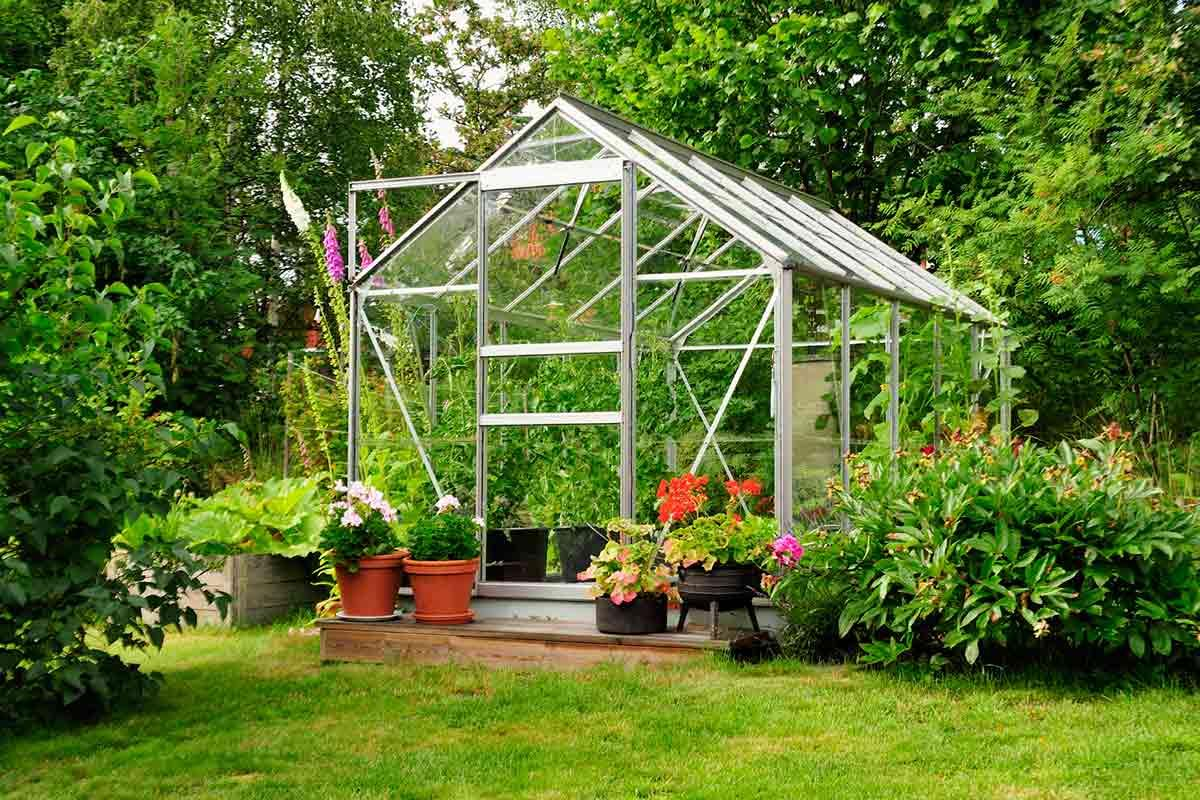 Enjoying a new Greenhouse in your Backyard