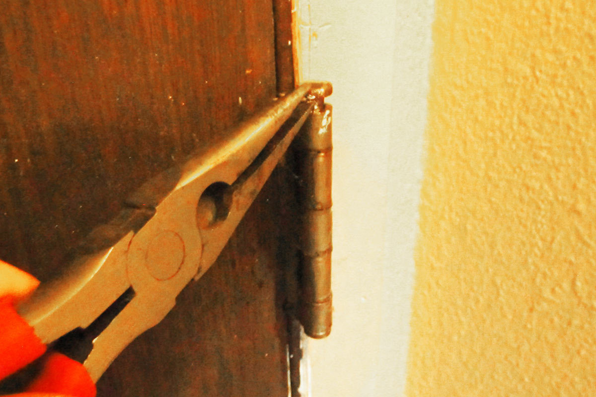 Remove both hinge pins from your squeaky door. This is easy to do with a pair of long needle nose pliers. Either pry the pin out by pressing the pliers ... & How to Fix a Squeaky Door Hinge in 5 Quick Steps pezcame.com