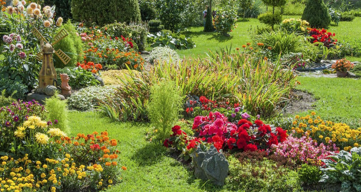 Choosing your new landscape with your Landscaping Designer