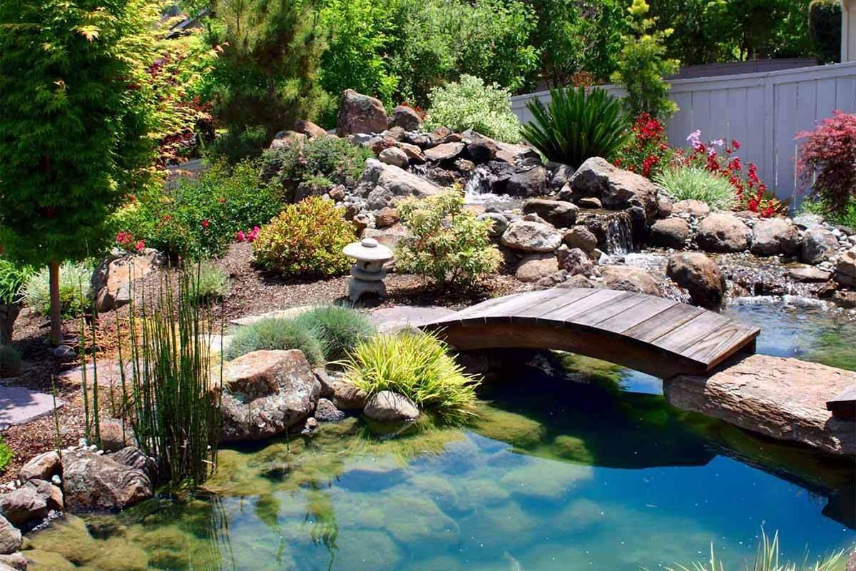 7 Beautiful Home Garden Pictures