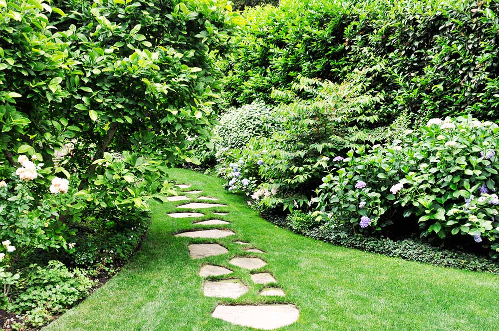 What is Landscaping? Expert Tips to Beautify Your Home