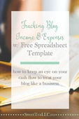 Tracking-blog-income-expenses-pin