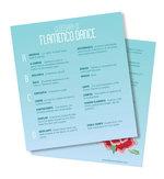Flamenco-glossary-lead-image