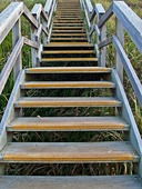 Stairs-1406794_640