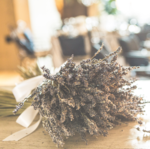 Convertkit-lavender_image