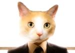 Felix_r._cat
