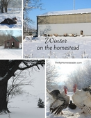 Winter_on_the_homestead_(1)