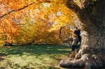Happy-couple_yellowleaves_treetrunk