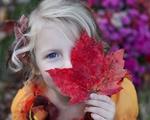 Truth homeschool leaf