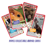 Coa-romes-animal-cards01-preview-01
