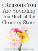 Spending_too_much_grocery_-_opt-in
