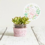 Easy-diy-planter-teacher-gift-ideas-edit-13-small