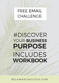 _discover-your-business-purpose-free-resource