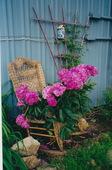 Garden-wicker-plant-support