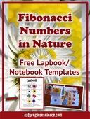 Fibonacci_numbers_in_nature_lapbook_pinterest_cover_752px