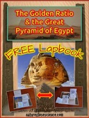 Pinterest cover great pyramid lapbook 752px
