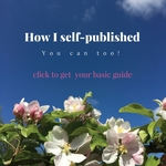 How_i_self-published_re-_create