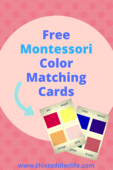 Montessori_activity_series_pins_(4)