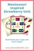 Montessori activity series pins (9)