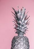 Pineapple-supply-co-86279