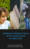 Working productively together in practice (2)
