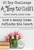 A_time_to_clean_30_day_challenge