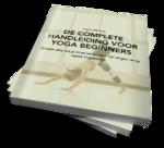 Ebook cover beginnershandleiding klein