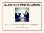 Leading_teams_-_new_cover