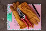 Glovestools
