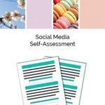 Social media self assessment instagram 300x300