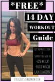 Free 14 day challenge