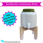 Kombucha continuous brew