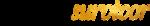 Debt survivor logo