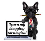 Blogging strategies