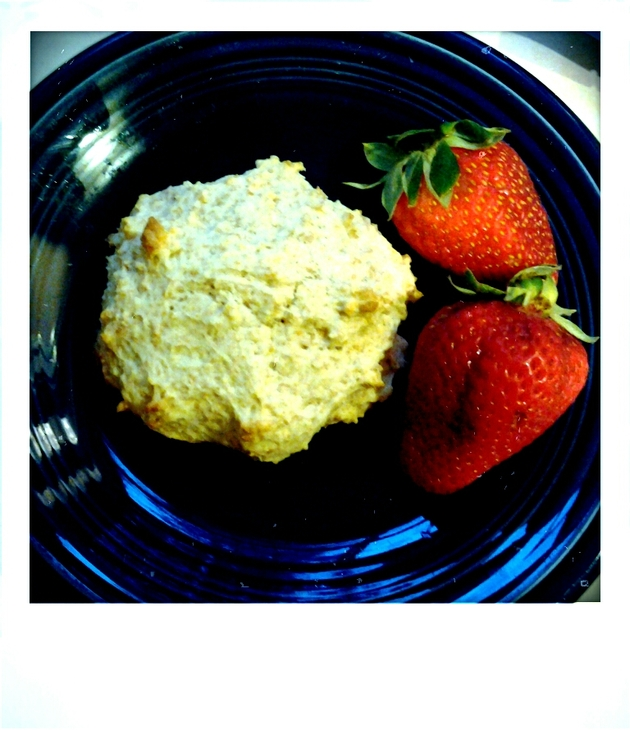 Almond and Wheat Bran Strawberry Shortcake by alchemisty